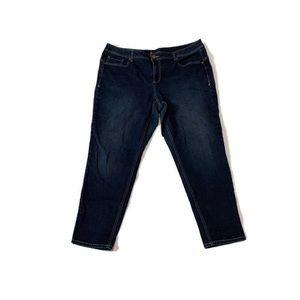 Lane Bryant Genius Fit Skinny Jeans Plus Size 22